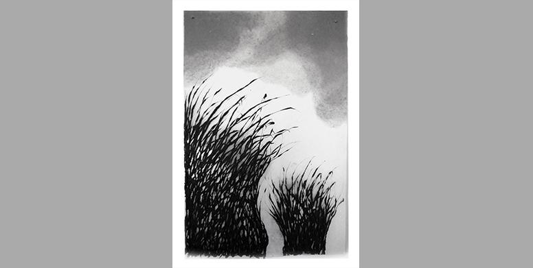 JML-Herbes-nuages